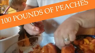 Processing 100 Pounds of Peaches
