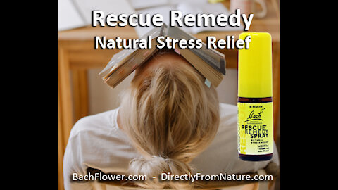 Bach Flower Remedies - Trusted for over 90 Years