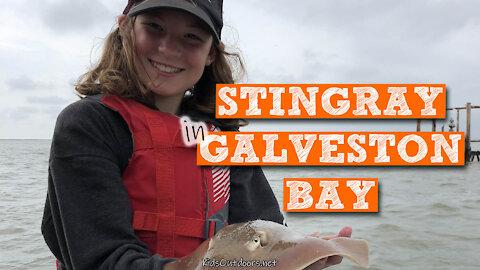 S2:E11 Stingrays on Galveston Bay | Kids Outdoors