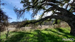 Hill Canyon Trail