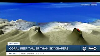 Scientist find coral reef bigger than empire state building