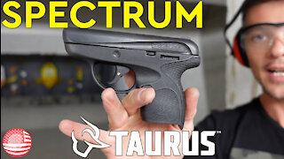 Taurus Spectrum Review (Taurus 380 Pocket Pistol)