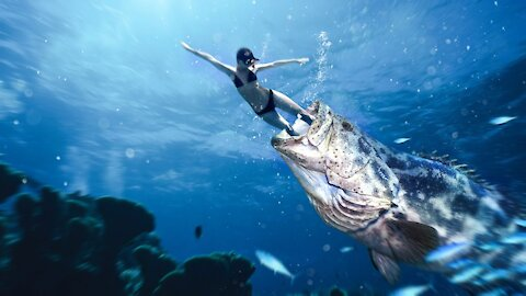 What If You Get Swallowed by a Goliath (Grouper) Fish?