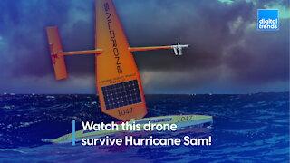 Watch this drone survive Hurricane Sam!