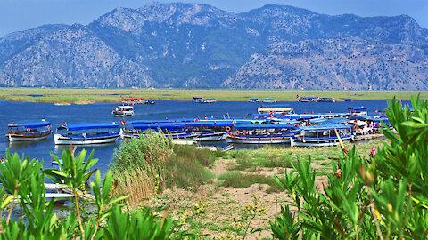 Dalyan on the Turkish Aegean