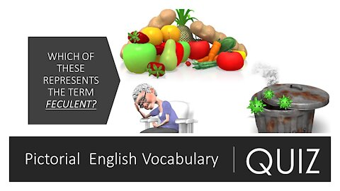 PICTORIAL ENGLISH VOCABULARY QUIZ (PART 2)