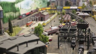 SOUTH AFRICA- Durban- Model train collectors (fho)
