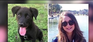 Rescue names dogs after front line workers