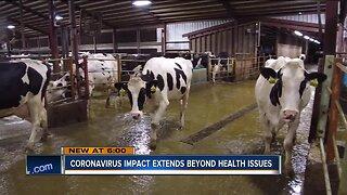 'It's discouraging for dairy farmers:' Coronavirus' economic impact on Wisconsin