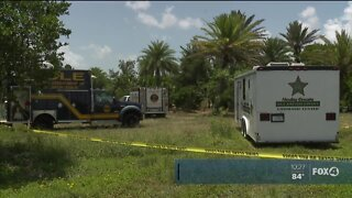 Human Skull found in Clewiston