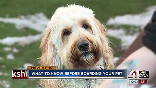 What to know before boarding your pet