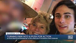 Arizona senator turning pain into push for action