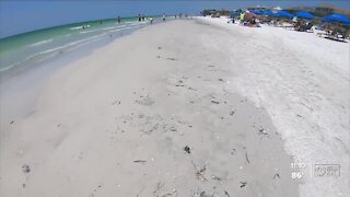 Pinellas County halts fish kill clean-up as red tide begins to dissipate on beaches