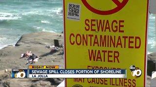 La Jolla sewage spill