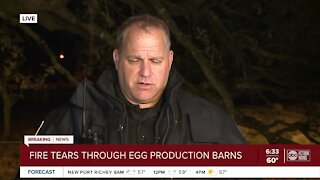 Fire tears through egg production barns in Dade City