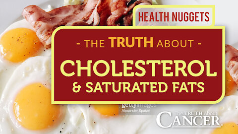 The TRUTH About Cholesterol & Saturated Fats