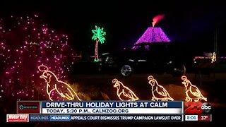 Drive-Thru Holiday lights at the CALM