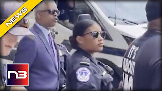 INSURRECTION! Dem. Rep. Hank Johnson Arrested During BLM Protest at Capitol