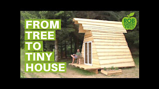 Building an Off Grid Tiny House from the Land