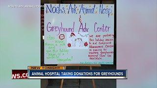 Noah's Ark Animal Hospital taking donations for greyhounds