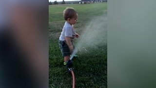 Kids Playing in the Sprinklers