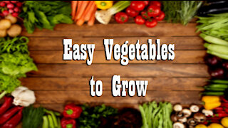 10 Super easy Vegetables to Grow ~ Grow Your Own Food