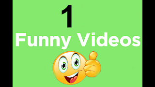 1 Funny Video - Funny Fails, Compilation of the Funniest Fails