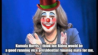 Kamala Harris: Joe Biden would be a good running mate as VP