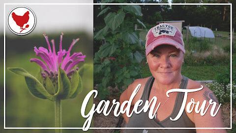 Come on a Tour of the Garden