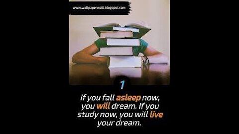 Study hard, sleep or party time?????
