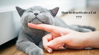 Animal Rescue - How to deactivate a Cat ?