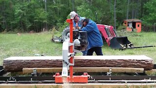 Mrs. J Helps With Sawmilling A Pine