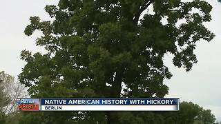 Native Spirit: Hickory Tree