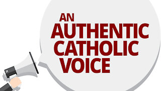 The Vortex — Catholic Voice