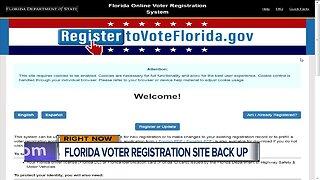 Voter registration website back up