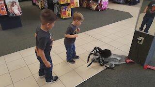 Halloween Store Scares