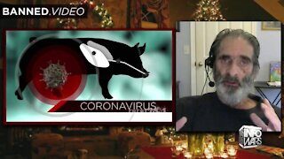 Jon Rappoport - SARS-COV-2 Has Still Not Been Proven To Exist!