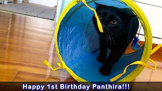 Panthiras 1st Birthday Present