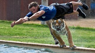 WATCH These Dangerous Animals CAUGHT Being Friendly!