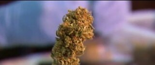 Possible marijuana pardons: Gov. Sisolak introduces new proposal