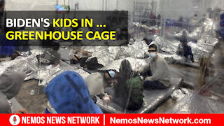 Trump Social Media, Biden's Kids in ...Greenhouse Cages.