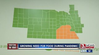 Growing need for food during pandemic