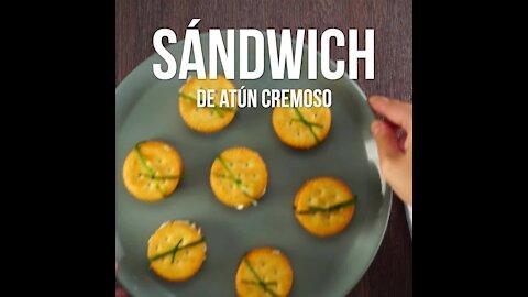 Easy Creamy Tuna Sandwich