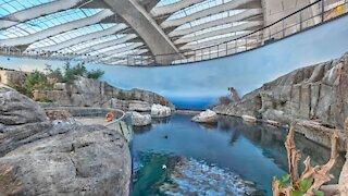 Voici à quoi ressemble maintenant le Biodôme de Montréal après les rénovations