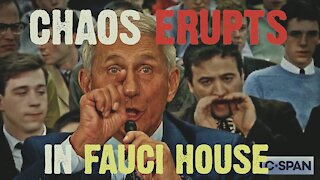 Chaos in Fauci House!