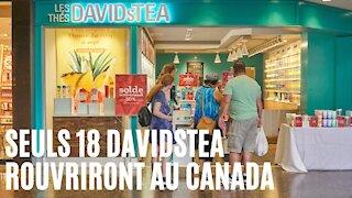 DavidsTea annonce qu'il rouvrira 7 de ces magasins dans des endroits précis au Québec