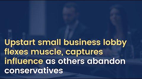 Upstart small business lobby flexes muscle, captures influence