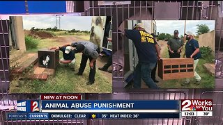 Local animal group supports animal cruelty as federal crime