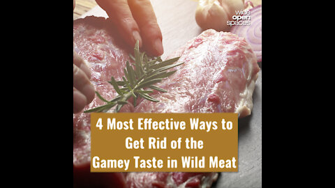 4 Most Effective Ways to Get Rid of the Gamey Taste in Wild Meat