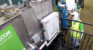Research pilot algae research project